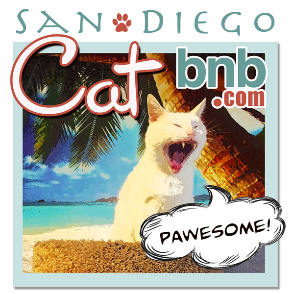 San Diego Cat bnb Boarding